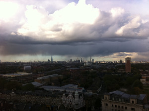 Figure 1: The view from Warmington Tower (2012)
